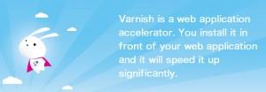 DirectAdmin 安装 Varnish 缓存(附卸载方法)
