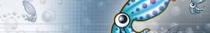 使用 Squid 正向代理,加速网站访问